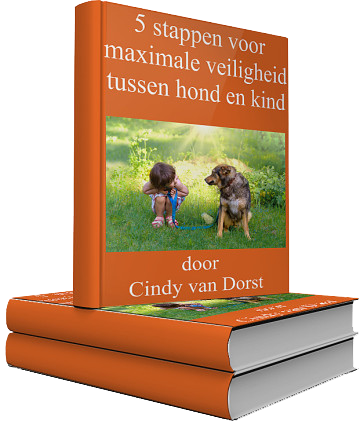 Ebook dierbareontmoetingen