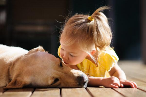 meisje kust hond Dierbare Ontmoetingen Hondenkind programma
